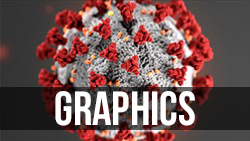 <b>Coronavirus</b> Graphics