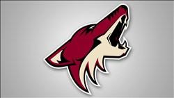 <B>Arizona</B> Coyotes