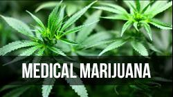 <b>Medical</b> Marijuana