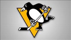 <B>Pittsburgh</B> Penguins