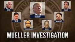 <b>Mueller</b> Investigation